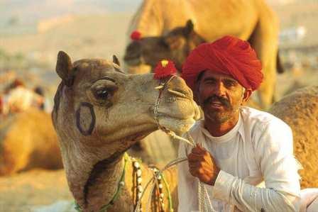 6Nts Jaisalmer Jodhpur Udaipur Rajasthan holiday package