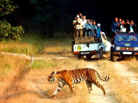 7Nts Nainital Corbett Haridwar Mussorie
