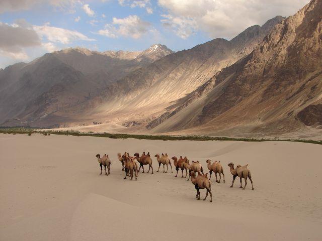 10Nts Leh Ladhakh With Srinagar