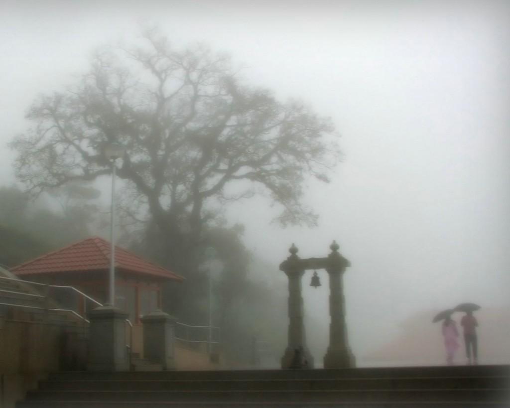 4Nts Bangalore Mysore Coorg