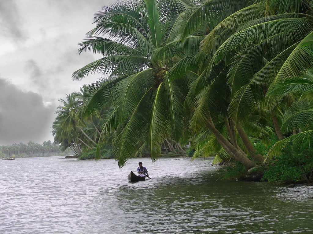 5Nts Munnar Thekkady  Kumarakom Cochin